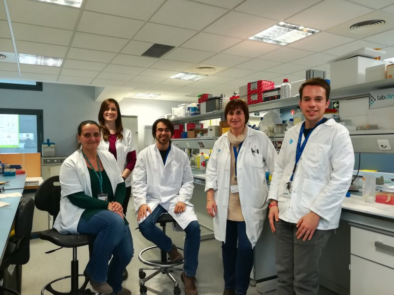 Equipo del grupo de investigación de Immunología de la DiabetesThe Immunology of Diabetes research group team