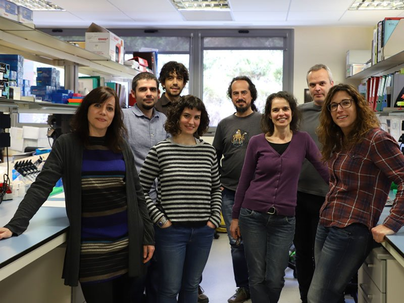 Hereditary Cancer research groupHereditary Cancer research group